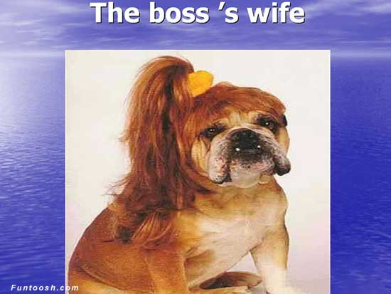 The Boss's wife